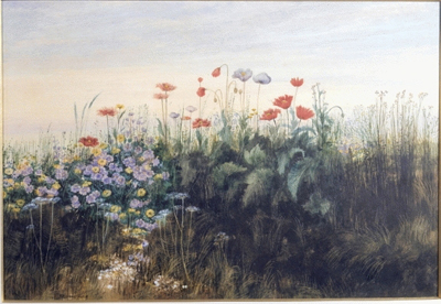 Irish landscape with wild flowers. late 1840s, Andrew Nicholl