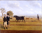 Castleton Ploughing Match by James Flewitt Mullock